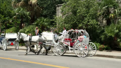 Pan of tourists taking ride in horse and carriage at san antonio, texas, usa Stock Footage