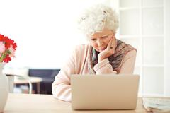 Stock Photo of senior woman busy browsing her laptop