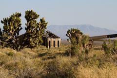Mojave national preserve Stock Photos