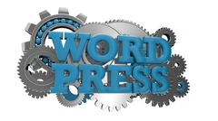 Word press Stock Illustration