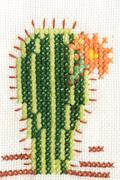 Cross-stitch embroidery of cactus with flower Stock Photos