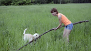 Stock Video Footage of Dog and woman playing with a stick in a park