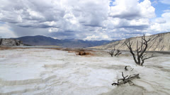 Mammoth Hot Springs C Stock Footage