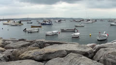 Many small boats in harbor Stock Footage