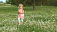 Child Picking Dandelion Flowers in Mountains, Girl Playing on a Meadow, Children Stock Footage