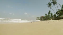 Tropical beach with palm trees. sri lanka, bentota Stock Footage