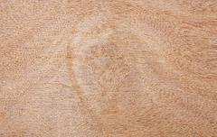 wooden grain plate - stock photo