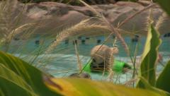 Visitors at Waterpark Floating-by in a Lazy River seen from Foliage Stock Footage