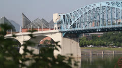 Bridge, Buildings and Traffic With Leaves Foreground Stock Footage