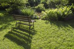 Wood bench with foliage Stock Photos