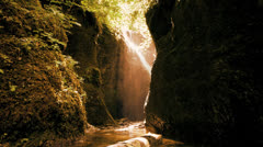 spring water waterfall fauna flora sun flare - stock footage