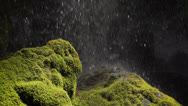 Water dropping onto mossy rocks Stock Footage