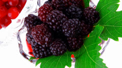 Wild berry in glass Stock Footage
