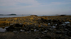Low Tide Boston Harbor Stock Footage