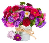 bouquet of   aster flowers in pot - stock photo