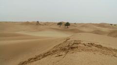 Abu Dhabi autiomaassa 2 Arkistovideo