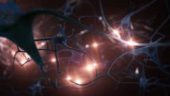 Nerve cell. Loopable. Yellow impulses. - stock footage