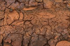 global warming - parched earth - stock photo