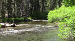 HD 1080p Stream in Mammoth Lakes Parks - Kulltech Stock Footage