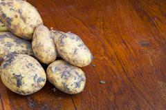 raw potatoes - stock photo