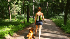 Pretty girl goes away with English Cocker Spaniel on the forest trail in summer Stock Footage