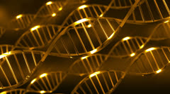 Gold DNA Ribbons Stock Footage