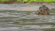 Stock Video Footage of River