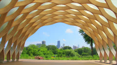 Lincoln park zoo skyline Stock Footage