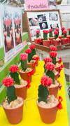 red many cactus - stock photo