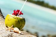 Stock Photo of coconuts on the beach