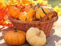 autumn basket - stock photo