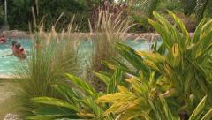 Fast Lazy River Flowing Behind Tropical Plants with People Stock Footage