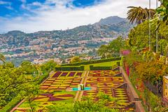 Stock Photo of jardim botanico, funchal