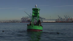 Sea Lion on buoy in California 1 Stock Footage