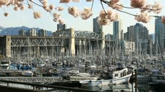 Burrard Bridge Spring Blossoms, Vancouver Stock Footage