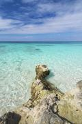coral beach in the caribbean - stock photo