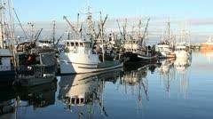 Steveston Fishing Fleet at Dock Stock Footage