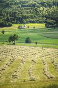 Grass fields with church Stock Photos