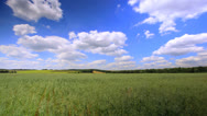 Stock Video Footage of Beautiful field and clouds. HDR 4K timelapse   4096x2304 without birds