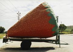 A gigantic strawberry on a trailer hitch Stock Photos