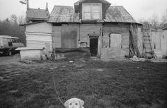 A dog in front of a rickety shack Stock Photos