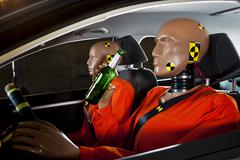 A crash test dummy drinking a beer while driving with a crash test dummy Stock Photos