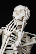 A human skeleton looking afraid - stock photo