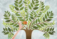 A hand picking the last apple from a tree Stock Illustration