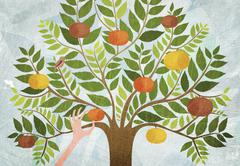 A hand picking an apple from a tree Stock Illustration