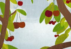 Detail of cherries growing on trees Stock Illustration