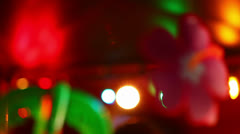 Hibiscus Flower Decoration With Blurred Lights in Background HD Video Stock Footage