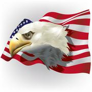 US Flag With Bald Eagle Head Stock Illustration