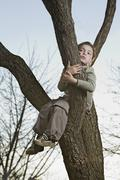 An unhappy boy sitting in a tree gripping a branch Stock Photos