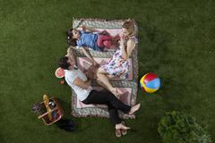 A family having a picnic in the park, overhead view Stock Photos